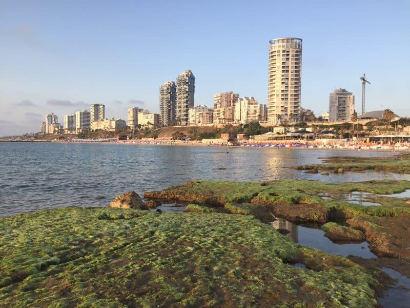 חוף הים - סלע